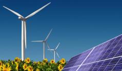 Avanzan proyectos de impacto medioambientales en Florida